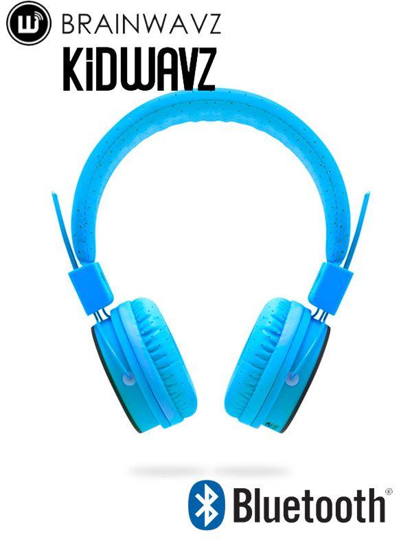 Brainwavz KV100